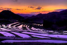 千葉県南部の鴨川市にある棚田「大山千枚田」。棚田百選に選ばれた棚田のうち、唯一雨水のみで耕作を行っているのが特徴です。秋には1万個のLEDライトが棚田を優しく照らす「棚田の秋祭り」が開催され、年間通して楽しむことができます。東京からスグ行けちゃう情緒溢れる風景「大山千枚田」に皆さんも癒されてみませんか?