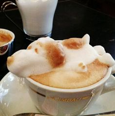 Coffee Art - Love this!  You could do this with your hot chocolate & marshmallows!