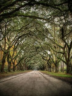 Savannah, GA, it's also one of the most haunted places in the U.S.