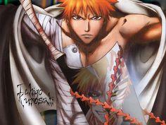 Ichigo and his Sword