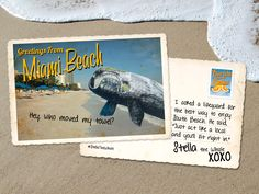 #MiamiBeach #StellaTheWhale New activities for you to enjoy before my migration starts October 14.