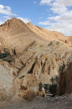 Tunisia-Desert 4x4 Excursion-Atlas Mtns-Chebika Village-view across Chebika Gorge on SE side of village