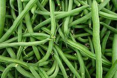 How to: grow beans. Seems easy enough. #garden #vegetables #summer