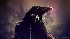 El vínculo que el cuervo guarda con el ser humano es muy significativo, inclusive en la actualidad... Conoce la historia de esta ave