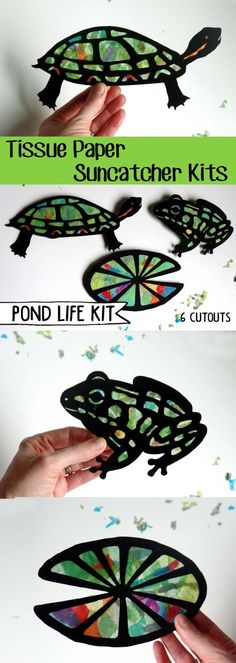 Kids Craft Pond Life Stained Glass Tissue Paper by HelloSprout