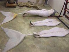 Name: Mermaids-Costumes-h2o-just-add-water-26141931-399-301 (1).jpg Views: 5250 Size: 14.3 KB