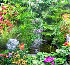 """Could achieve this look with the """"stone"""" fountain at Lowes with plants grouped around it. Japanese Garden Backyard, Tropical Backyard, Tropical Landscaping, Garden Ponds, Exotic Plants, Tropical Plants, Tropical Gardens, Beautiful Flowers Garden, Beautiful Gardens"""