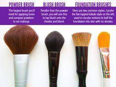 Basic Face Brushes #makeupbrushes #makeup #howtousemakeupbrushes