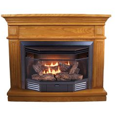 Natural Gas Amp Propane Gt Freestanding Stoves Direct Vent