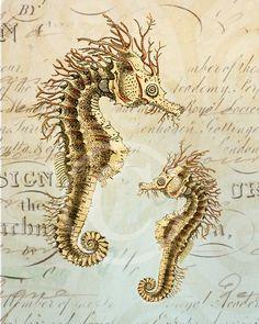 Seahorse collage print by Sabine 1001 Treasures on Etsy Seahorse Art, Seahorses, Sea Life Art, Ocean Life, Life Drawing, Painting & Drawing, Marine Fish, Magical Creatures, Horse Love