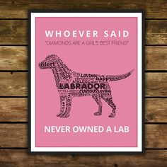 Labradors.com Shop | Finding unique and cool labradors products.