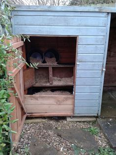Turning the old dog kennel/run into a home for our bantams. I have used an old guinea pig hutch as a nesting box with buckets on their side on the top as extra nesting spots.