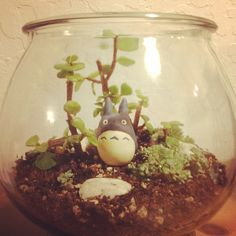 Totoro terrarium Make Totoro out of clay (or buy figurine) Plant plants in a…