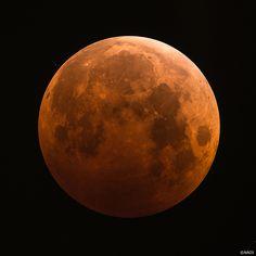 2014.10.08.  total eclipse. Tokyo, Japan
