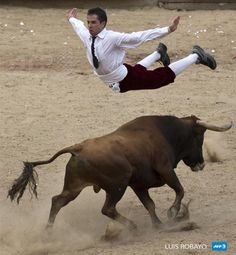 COLOMBIA, Cali : A man jumps over a bull during a ;recortadores; bullfight at the Canaveralejo bullring in Cali, Department of Valle del Cauca, Colombia, on December 21, 2014. The recortadores bullfight is an ancient tradition in which men try to dodge the bull without a cape or sword. Bulls are not killed during this type of bullfight. AFP PHOTO / LUIS ROBAYO