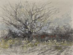 "Raymond Berry: Luck's, Fruit Tree, December 19, 2015, Graphite and Encaustic, 12"" x 16"""