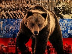 Russia Cuts Off Ukraine Gas Supply To 6 European Countries! Gas Supply, Military Units, Facebook Timeline Covers, Vladimir Putin, European Countries, New World Order, Fauna, Brown Bear, Real People