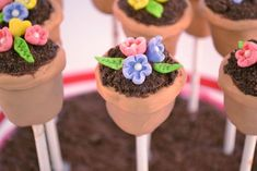 Spring Flower Pot Cake Pops 9 - Little Lion Baked Goods Flower Cake Pops, Flower Pot Cake, Flower Pots, Mini Tortillas, Cake Truffles, Cupcake Cookies, Pretty Cakes, Cute Cakes, Gorgeous Cakes