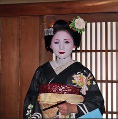 Maiko Mameharu-san wears the most stunning Asagao kanzashi I've seen so far. It even has a little bling ;)