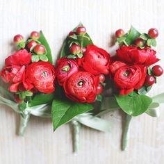 boutonniere- white ranunculus with green berries