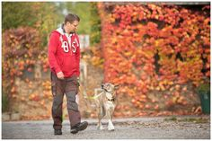 Hund zieht an der Leine Hundetrainer Dresden