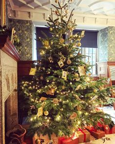 'Deck the halls'. Stepping back in time with a traditional Victorian Christmas at Lanhydrock House. #nt #ntchallenge #nationaltrust #nationaltrustsouthwest #christmas #lanhydrock #victorianchristmas #tree #victorian #lanhydrockhouse #festive #deckthehalls #itschristmas #stepbackintime #lanhydrocknt #nationaltrustuk