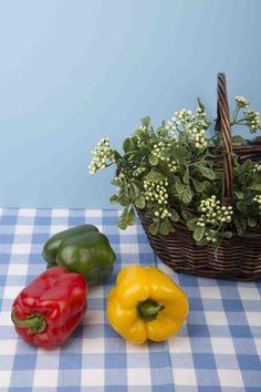 Vegetable basket Basket basket Basket Basket life and vegetable basket eating basket pepper Vegetable Basket, Bell Pepper, Basket Ideas, Gift Baskets, Wicker, Healthy Eating, Stuffed Peppers, Vegetables, Fruit