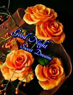 Top Good Night Images For Whatsapp, Good Night Images For Whatsapp, Date Night Ideas, Date Night Ideas Lovely Good Night, Good Night Sweet Dreams, Good Night Image, Good Night Greetings, Good Night Wishes, Good Night Quotes, Creative Date Night Ideas, Romantic Date Night Ideas, Romantic Dates