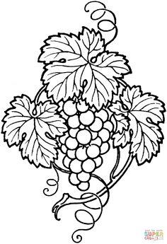 Mooie druivenrank   Super Coloring