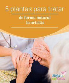 5 plantas para tratar de forma natural la artritis  La artritis es una enfermedad crónica que genera inflamación en las articulaciones.