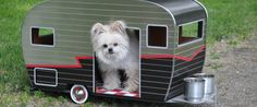 LOOK: $800 Trailers. For Your Dog