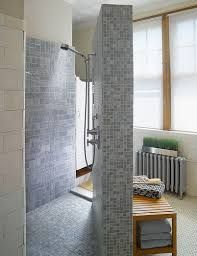 Love The Walk In Doorless Showers For Small Bathrooms Design Ideas Doorless  Walk In Shower In Small Size Bathroom