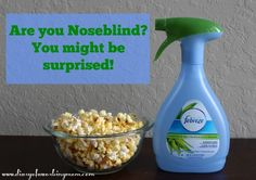 Are You Noseblind? You Might Be Surprised... {& a Fabulous Febreze #Giveaway!} - Diary of a Working Mom