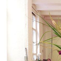 #Details #tiles #doublestudioberlin #Hairdresser #hairstylist With @davinesdeutschland @davinesofficial #berlin #welovehair #flowers #nature #crueltyfree #beauty #yourhairassistant #essentials