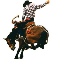 Cheyenne Frontier Days, Cheyenne, WY, Jul 18-30