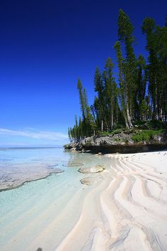 Go on a hike through the Isle of Pines. Woods, beach and crystal clear water can be found in this New Caledonia beach spot located off the Australian coast in the southwest Pacific Ocean.