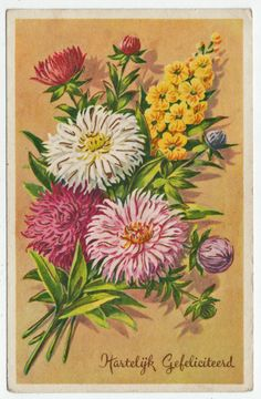 Postcards - Greetings & Congrads #  610 - Happy Birthday with Asters