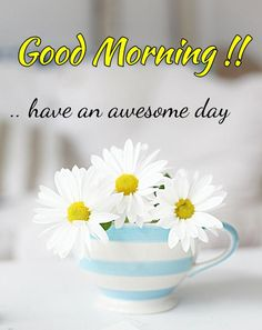 wish Good morning wishes, Good morning quotes, good morning messages here Good Morning Beautiful Pictures, Latest Good Morning Images, Good Morning Beautiful Quotes, Good Morning Flowers, Good Morning Picture, Morning Pictures, Good Morning Quotes, Night Quotes, Good Morning Friends Images