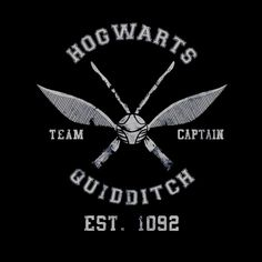 Sudadera Harry Potter. Hogwarts Quidditch