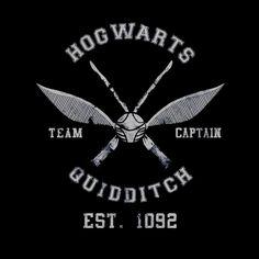 Sudadera Harry Potter. Hogwarts Quidditch