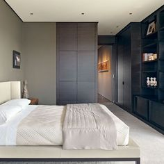 Bedroom Built In Armoire Design, Pictures, Remodel, Decor and Ideas