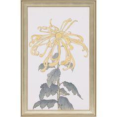 """Paragon """"Elegant Chrysanthemum II"""""""