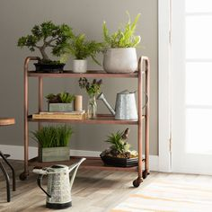 Rustic and charming, this functional cart features a sturdy steel construction with an antiqued copper finish. Designed atop casters for easy mobility, this versatile cart will add vintage style to your contemporary living space. Baby Furniture Sets, Deck Furniture, Furniture Outlet, Cheap Furniture, Furniture Deals, Living Room Furniture, Living Room Decor, Hanging Ladder, Hanging Shelves