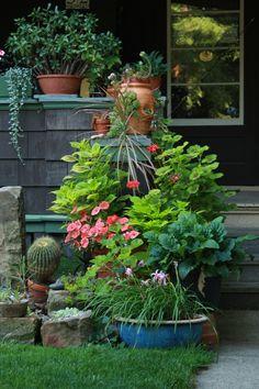 Linda's garden in Ohio--click through to see more photos of this garden