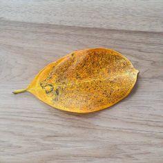 Leaf Art By Kerby Rosanes 2015