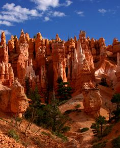 Bryce Canyon - Don't remember this too well as I was too uncomfortable being in Utah (they don't like my kind there)!