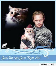 Too much cat love... (that totally looks like alexander skarsgård)