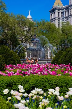 New York City: Summer in City Hall Park. Il est situé dans le civic center, quartier dense de Manhattan où se concentrent les bâtiments officiels et administratifs.