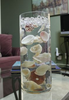 seashells suspended in clear water beads