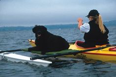 Kayak attachment for dog